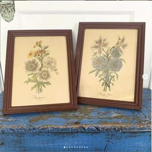 Antique French Floral Botanical Flower Print Pair